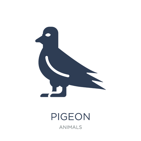 Pigeon icon. Trendy flat vector Pigeon icon on white background from animals collection, vector illustration can be use for web and mobile, eps10