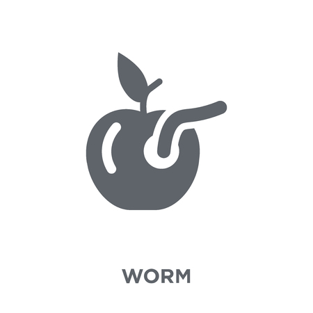 Worm icon. Worm design concept from Agriculture, Farming and Gardening collection. Simple element vector illustration on white background.