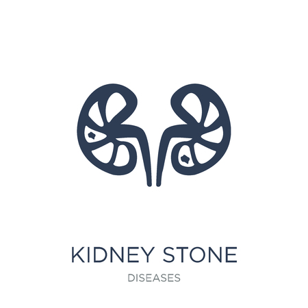 Kidney stone disease icon. Trendy flat vector Kidney stone disease icon on white background from Diseases collection, vector illustration can be use for web and mobile, eps10