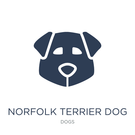 Norfolk Terrier dog icon. Trendy flat vector Norfolk Terrier dog icon on white background from dogs collection, vector illustration can be use for web and mobile, eps10 Ilustração