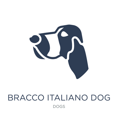 Bracco Italiano dog icon. Trendy flat vector Bracco Italiano dog icon on white background from dogs collection, vector illustration can be use for web and mobile, eps10