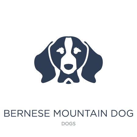 Bernese Mountain dog icon. Trendy flat vector Bernese Mountain dog icon on white background from dogs collection, vector illustration can be use for web and mobile, eps10