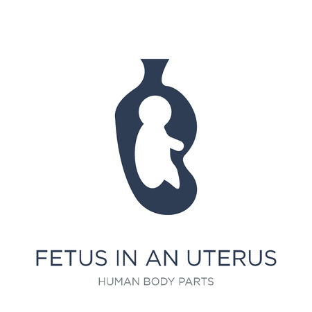 Fetus in an uterus icon. Trendy flat vector Fetus in an uterus icon on white background from Human Body Parts collection, vector illustration can be use for web and mobile, eps10 Standard-Bild - 112100547