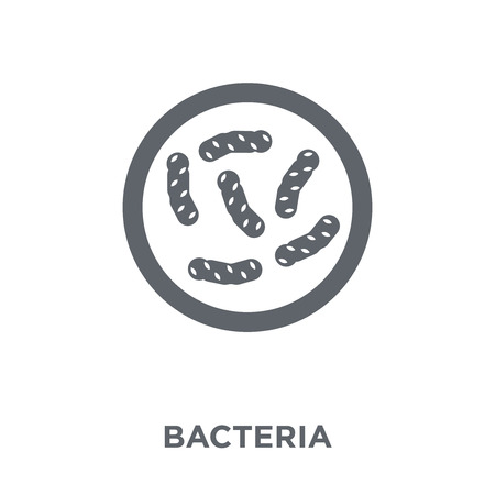 Bacteria icon. Bacteria design concept from  collection. Simple element vector illustration on white background.