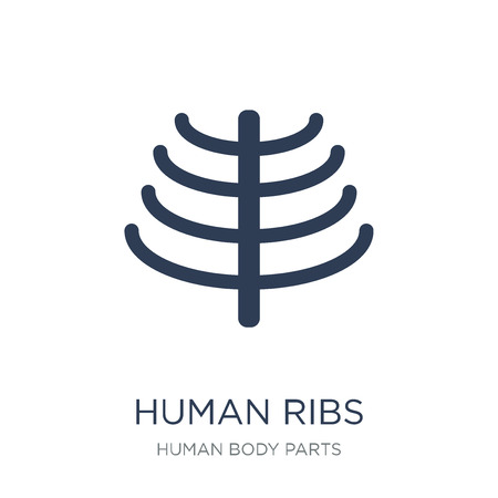 Human Ribs icon. Trendy flat vector Human Ribs icon on white background from Human Body Parts collection, vector illustration can be use for web and mobile, eps10