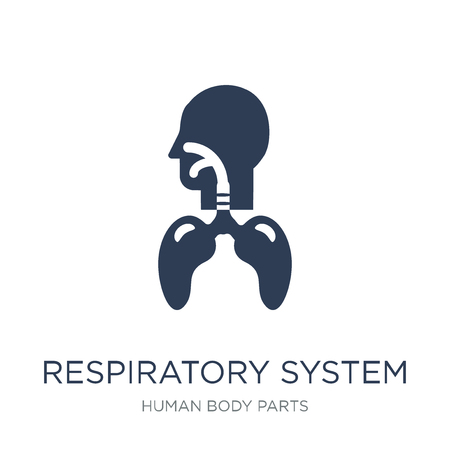 Respiratory System icon. Trendy flat vector Respiratory System icon on white background from Human Body Parts collection, vector illustration can be use for web and mobile, eps10 Imagens - 112103339