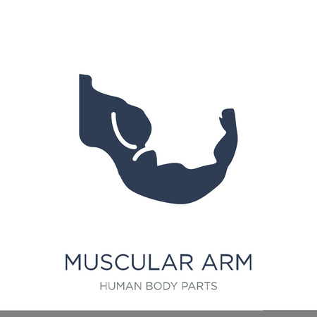 Muscular arm icon. Trendy flat vector Muscular arm icon on white background from Human Body Parts collection, vector illustration can be use for web and mobile, eps10
