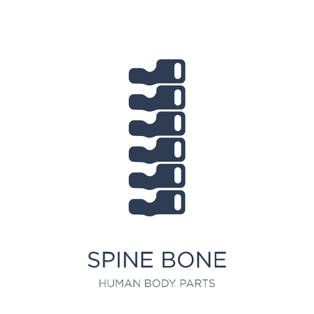 Spine Bone icon. Trendy flat vector Spine Bone icon on white background from Human Body Parts collection, vector illustration can be use for web and mobile, eps10