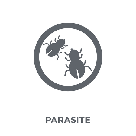 parasite icon. parasite design concept from Hygiene collection. Simple element vector illustration on white background.  イラスト・ベクター素材