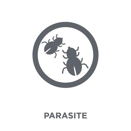Parasiten-Symbol. Parasiten-Designkonzept aus der Hygiene-Kollektion. Einfache Elementvektorillustration auf weißem Hintergrund. Vektorgrafik