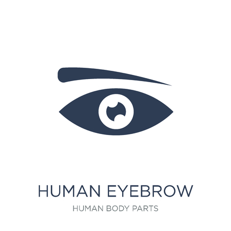 Human Eyebrow icon. Trendy flat vector Human Eyebrow icon on white background from Human Body Parts collection, vector illustration can be use for web and mobile, eps10 스톡 콘텐츠 - 112138810