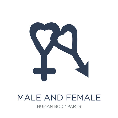 Male and female gender symbols icon. Trendy flat vector Male and female gender symbols icon on white background from Human Body Parts collection, vector illustration can be use for web and mobile, eps10