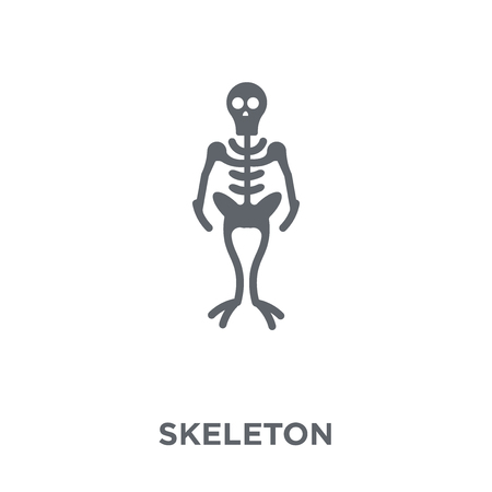 Skeleton icon. Skeleton design concept from  collection. Simple element vector illustration on white background.