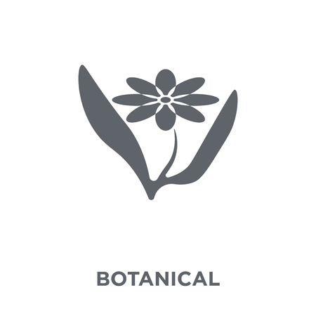 Botanical icon. Botanical design concept from Museum collection. Simple element vector illustration on white background.