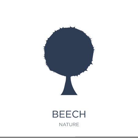 Beech icon. Trendy flat vector Beech icon on white background from nature collection, vector illustration can be use for web and mobile, eps10