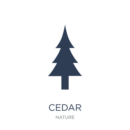 Cedar icon. Trendy flat vector Cedar icon on white background from nature collection, vector illustration can be use for web and mobile, eps10 Illusztráció