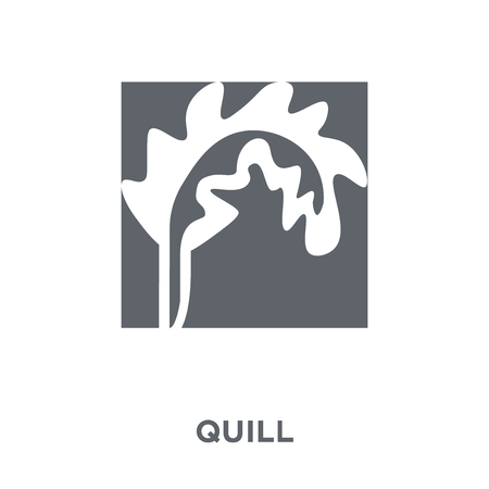 Quill icon. Quill design concept from  collection. Simple element vector illustration on white background.