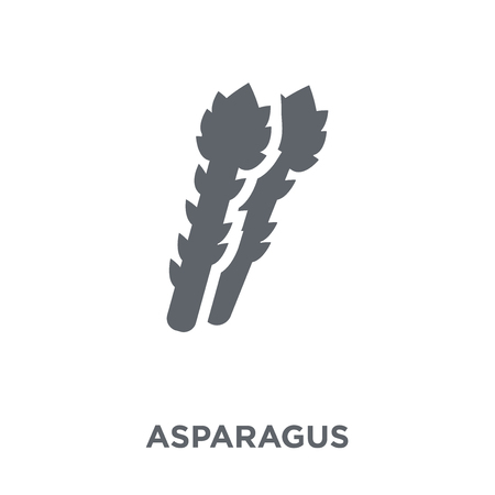 Asparagus icon. Asparagus design concept from Fruit and vegetables collection. Simple element vector illustration on white background.