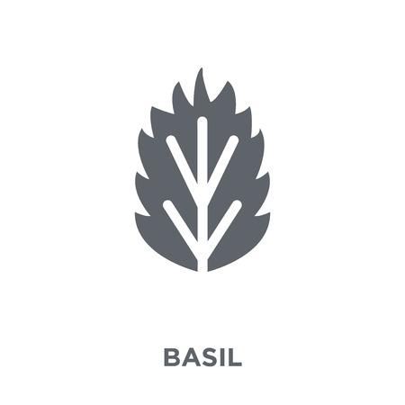 Icona di basilico. Concetto di design di basilico dalla collezione di frutta e verdura. Illustrazione vettoriale semplice elemento su sfondo bianco.
