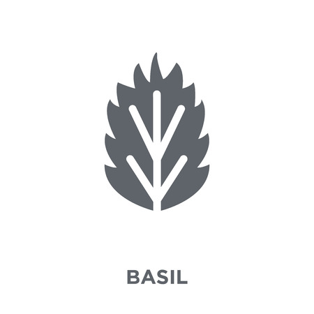 Basil icon. Basil design concept from Fruit and vegetables collection. Simple element vector illustration on white background.