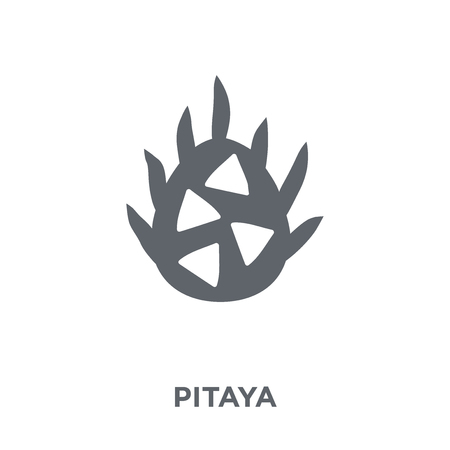 Pitaya icon. Pitaya design concept from Fruit and vegetables collection. Simple element vector illustration on white background.