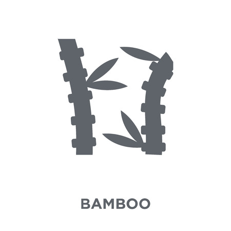 Bamboo icon. Bamboo design concept from Fruit and vegetables collection. Simple element vector illustration on white background.