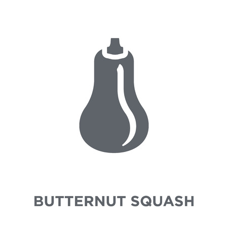 Butternut squash icon. Butternut squash design concept from Fruit and vegetables collection. Simple element vector illustration on white background.