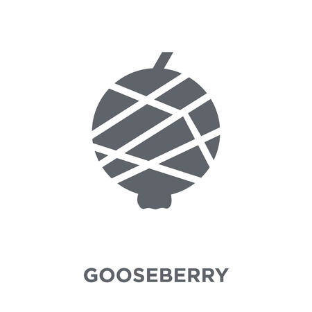 Gooseberry icon. Gooseberry design concept from Fruit and vegetables collection. Simple element vector illustration on white background. Çizim