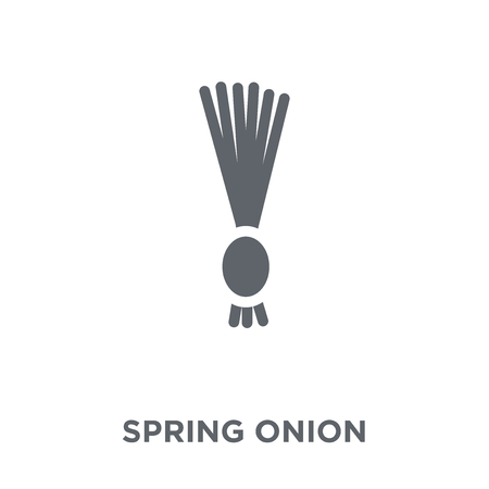 Spring onion icon. Spring onion design concept from Fruit and vegetables collection. Simple element vector illustration on white background.