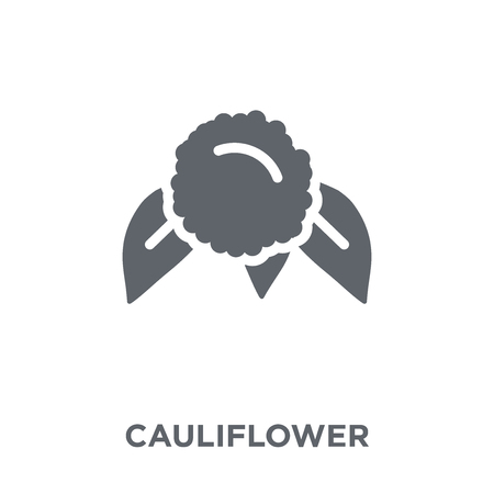 Cauliflower icon. Cauliflower design concept from Fruit and vegetables collection. Simple element vector illustration on white background.
