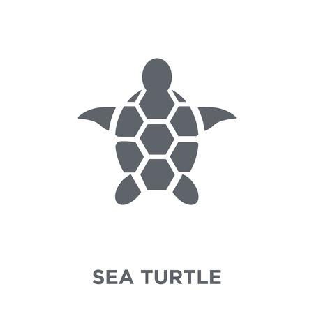 Icône de tortue de mer. Concept de design de tortue de mer de la collection Summer. Illustration vectorielle élément simple sur fond blanc.