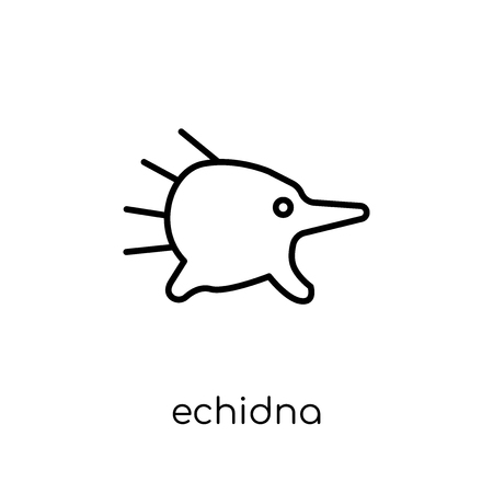 Echidna icon. Trendy modern flat linear vector Echidna icon on white background from thin line animals collection, editable outline stroke vector illustration  イラスト・ベクター素材