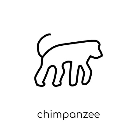 chimpanzee icon. Trendy modern flat linear vector chimpanzee icon on white background from thin line animals collection, editable outline stroke vector illustration Foto de archivo - 111327330