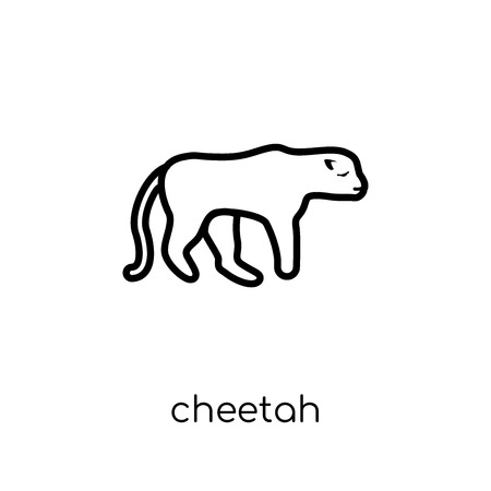 Cheetah icon. Trendy modern flat linear vector Cheetah icon on white background from thin line animals collection, editable outline stroke vector illustration Archivio Fotografico - 111331405