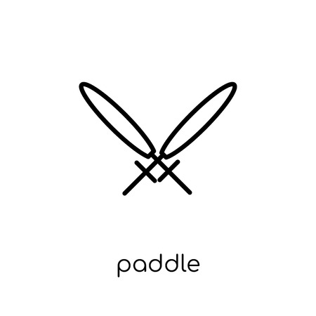 paddle icon. Trendy modern flat linear vector paddle icon on white background from thin line Camping collection, outline vector illustration