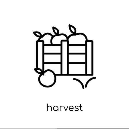 harvest icon. Trendy modern flat linear vector harvest icon on white background from thin line Agriculture, Farming and Gardening collection, outline vector illustration