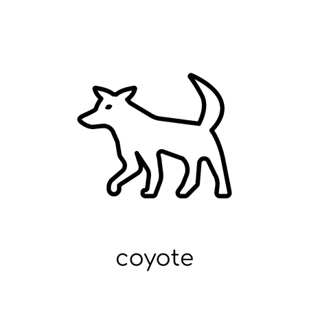 Coyote icon. Trendy modern flat linear vector Coyote icon on white background from thin line animals collection, editable outline stroke vector illustration