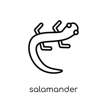 salamander icon. Trendy modern flat linear vector salamander icon on white background from thin line animals collection, editable outline stroke vector illustration 版權商用圖片 - 112418881