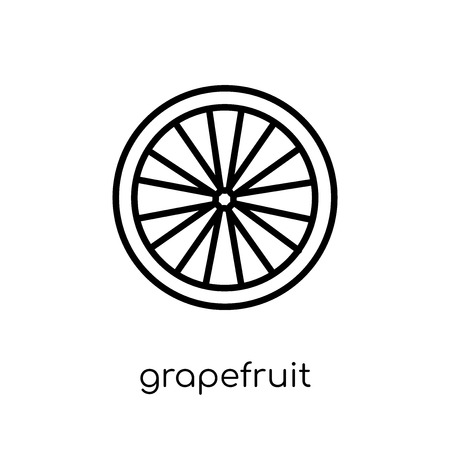 grapefruit icon. Trendy modern flat linear vector grapefruit icon on white background from thin line Fruit and vegetables collection, outline vector illustration