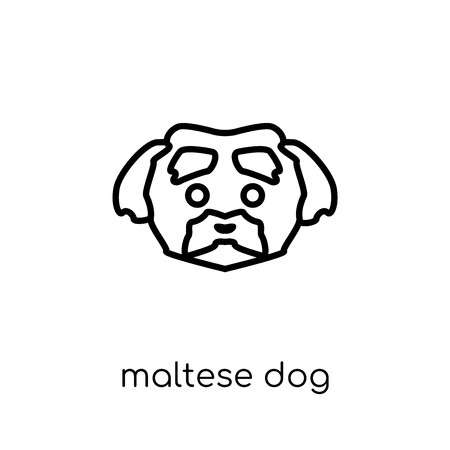 Maltese dog icon. Trendy modern flat linear vector Maltese dog icon on white background from thin line dogs collection, editable outline stroke vector illustration  イラスト・ベクター素材