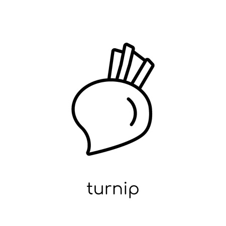 turnip icon. Trendy modern flat linear vector turnip icon on white background from thin line Fruit and vegetables collection, outline vector illustration