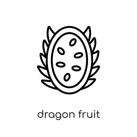 dragon fruit icon. Trendy modern flat linear vector dragon fruit icon on white background from thin line Fruit and vegetables collection, outline vector illustration Stock Vector - 112235945