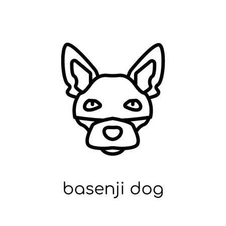 Basenji dog icon. Trendy modern flat linear vector Basenji dog icon on white background from thin line dogs collection, editable outline stroke vector illustration