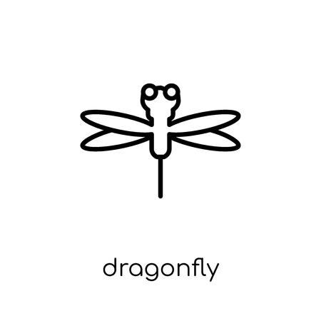 Dragonfly icon. Trendy modern flat linear vector Dragonfly icon on white background from thin line Fairy Tale collection, editable outline stroke vector illustration Ilustração