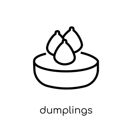 dumplings icon. Trendy modern flat linear vector dumplings icon on white background from thin line Chinese Food collection, outline vector illustration  イラスト・ベクター素材