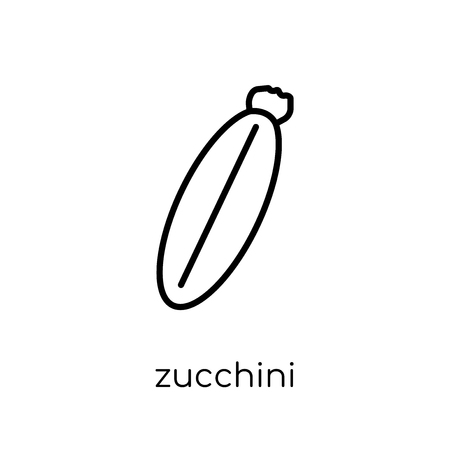 zucchini icon. Trendy modern flat linear vector zucchini icon on white background from thin line Fruit and vegetables collection, outline vector illustration Zdjęcie Seryjne - 112235701