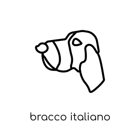 Bracco Italiano dog icon. Trendy modern flat linear vector Bracco Italiano dog icon on white background from thin line dogs collection, editable outline stroke vector illustration