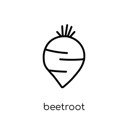 beetroot icon. Trendy modern flat linear vector beetroot icon on white background from thin line Fruit and vegetables collection, outline vector illustration