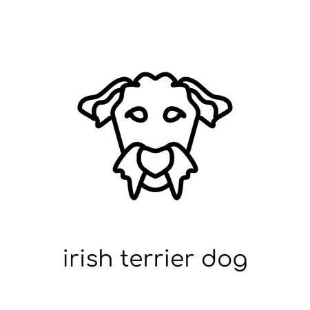 Irish Terrier dog icon. Trendy modern flat linear vector Irish Terrier dog icon on white background from thin line dogs collection, editable outline stroke vector illustration