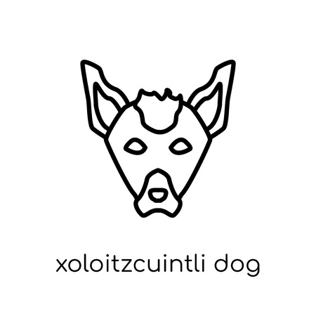 Xoloitzcuintli dog icon. Trendy modern flat linear vector Xoloitzcuintli dog icon on white background from thin line dogs collection, editable outline stroke vector illustration 向量圖像